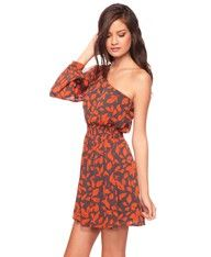 Long sleeved, one sleeve dress