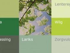 Warme kleuren | verzadigde kleuren - kleur & humeur van Histor | Kleur & humeur | Histor.nl | Histor
