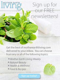 Growing Lemon Verbena and Keeping it Alive - Gardening - Mother Earth Living