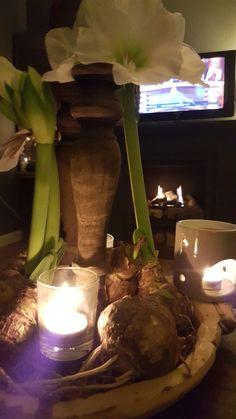 Amaryllis lichtjes & haard