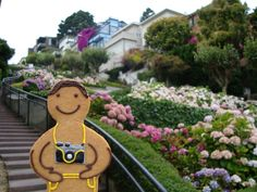 This Jolly Ginger enjoyed snapping away on the Zigzag Road in San Francisco.