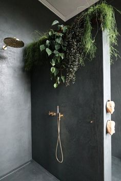 Effect of hanging plants on black wall over bench seating. Also hang down from bulkhead along bar / bar seating