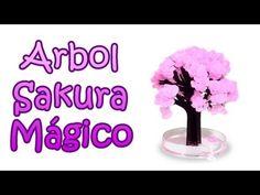 Salura Arbol Mágico http://www.youtube.com/watch?v=M-uv6iT9zb0