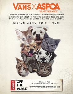 ASPCA Vans Flyer: Come out to Greenpoint today to Adopt a Furry Friend and Get Dog- and Cat-Themed Apparel from Vans!