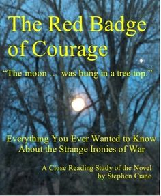 25 best my literature units at tpt images on pinterest close red badge of courage close reading study guide 18 pages teaching american literaturehigh fandeluxe Choice Image