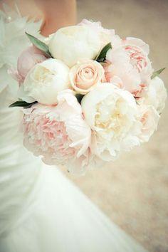 Peonies ,& roses