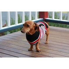"""Minipet just loves these striped, knitted dog jumpers!  These smart Candy Striped Jumpers are cute and soft.   They are easy to wear with special attention to detail including a little back pocket for treats. Such a fun range and a great fit on Dachshunds!"""