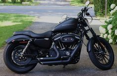 Harley Davidson Iron 883 - I like those pipes.