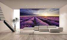 Lavender Sunrise Wall Mural Photo Wallpaper GIANT WALL DECOR PAPER POSTER