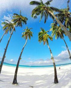 #destinationsocial #boracay #boracayisland #turquoise #palmtrees #beach #whitesand #travel #traveler #travelerslife #worldtravelerslife #beach #pool #palmtrees #drink #turquoise #island #islandlife # islandstyle #bermuda #summer #summer17 #wedding #dreamwedding #honeymoon #travel #traveler #beachwedding #palmtrees #beautifuldestination #vacation