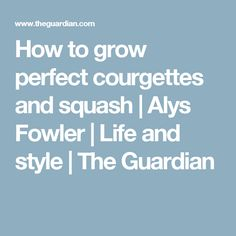How to grow perfect courgettes and squash | Alys Fowler | Life and style | The Guardian