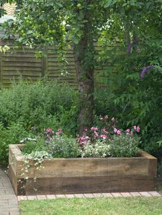 Mixed flowers and ivy in a raised planter bed pop against a background of lush shrubs and a fruiting lime tree.