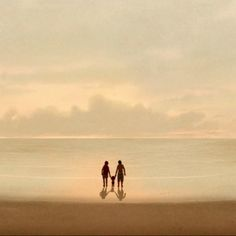 The Red Turtle, an enchanting movie. ADV