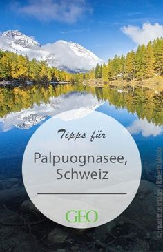 Der Palpuognasee befindet sich inmitten der schweizerischen Alpen auf einer stolzen Höhe von 1917 Metern über dem Meer. Er gehört zu dem Kanton Graubünden und liegt auf dem Gebiet der Gemeinde Bergün, unmittelbar oberhalb des Dörfchens Preda. Places In Switzerland, Visit Switzerland, Hidden Places, Secret Places, Places To Travel, Places To See, Road Trip Europe, Lake Photography, Reisen In Europa
