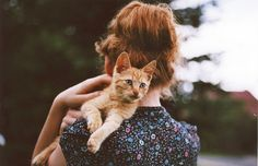 little red kitten by worteinbildern, via Flickr
