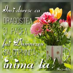 Biblical Verses, Jesus Loves You, God Jesus, People Quotes, Love You, Herbs, Flowers, Bible, Scripture Verses