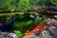 Colômbia, no Parque Nacional Natural de Macarena, e encanta pela sua extrema beleza. O rio Caño Cristales, conhecido também como arco-íris derretido, chama atenção pelas suas diversas cores vibrantes e a mistura delas.
