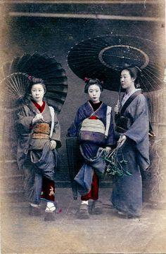 Two Hangyoku (Young Geisha) and a Geisha with Bangasa (Paper umbrellas).
