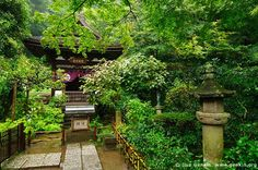 kamakura japan | ... -ji Temple in Kamakura, Engaku-ji Temple, Kamakura, Honshu, Japan