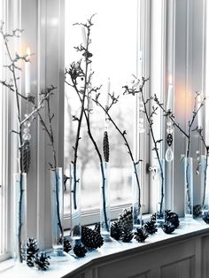 winter decor - tall beakers with branches