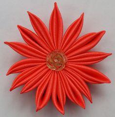 разновидность острого лепестка/a variety of acute petals