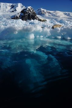 Antarctica. My father in law did a tour here and wrote a published book about Antarctica. Look it up. Denis Clift