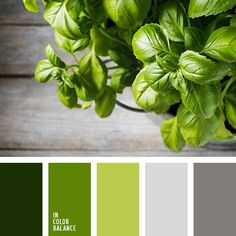 beautiful natural  green and gray color scheme