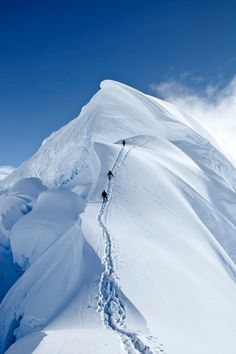 Climbers on the summit mushroom of Nevado Chopicalqui, 6354m high, in Peru