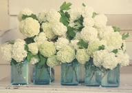 gorgeous white hydrangea in blue mason jars for nautical Cape Cod wedding