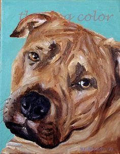 custom pet portraits done in oil paints.