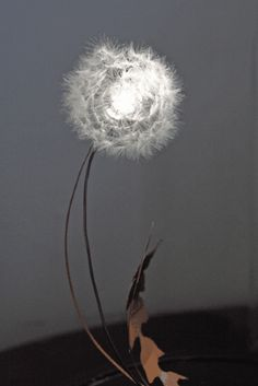 The Amazing Dandelight....This is a really stunning piece of design.  Each light is made from real dandelion clocks.  The seeds are painstakingly stuck on to the light - it really is to be seen to be believed - simply stunning.