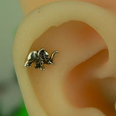 Hey, I found this really awesome Etsy listing at https://www.etsy.com/listing/189426532/unique-cartilage-earring-elephant