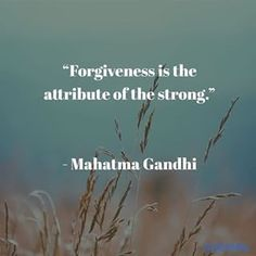Prive Wellness Akwa Instagram Feed Health And Wellness Quotes, Mahatma Gandhi, Instagram Feed, Forgiveness, Life Quotes, Stress, Teaching, Board, Thunder