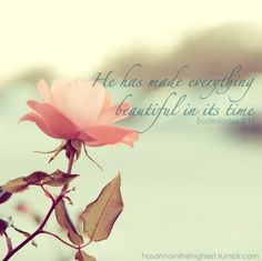 He has made everything beautiful in His time