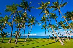 Sapphire Seas Beach Estate