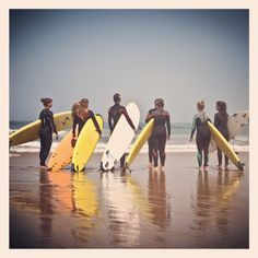 Wish you were here Wish You Are Here, Camps, Penguins, Surfing, Animals, Animais, Animales, Animaux, Surf