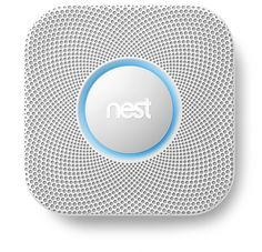 nest smoke detector and CO2 detector. A MUST.