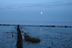 Amrum - Die Nordsee Insel: Amrum
