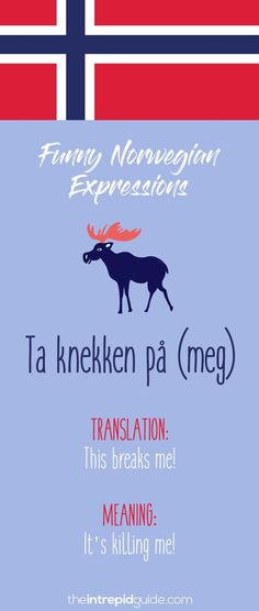 Norwegian Sayings and Idioms - Stopp en halv Learning Tools, Fun Learning, Norwegian Words, Norway Language, Norway Travel, How To Speak French, Idioms, Hilarious, Funny