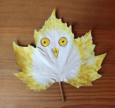 Hazel Terry   Owl Leaf