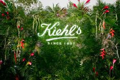 The step-and-repeat wall included an illuminated Kiehl's logo and was adorned with lush tropical greenery, another nod to the natural skin care product. Photowall Ideas, Jeff Leatham, Plant Logos, Deco Restaurant, Tropical Party, Plant Wall, Floral Wall, Event Styling, Havana