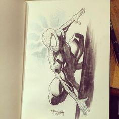 Spider-Man by Stephen Segovia