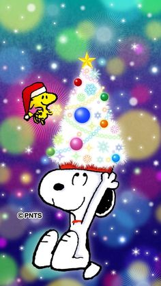 Snoopy Christmas for More Snoopy> https://www.pinterest.com/jodyclaus1/snoopy/ Snoopy Christmas, Peanuts, All Things Christmas, Tips