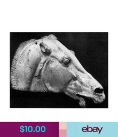 Posters & Prints Greek Sculpture Poster.Stylish Graphics. Horse Head Room Decor Art.1701 #ebay #Home & Garden