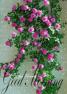TO ALL HERE…… GOD BLESS
