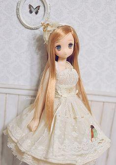Custom Azone Doll