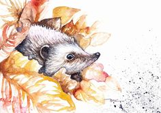 Original Watercolour Painting by Be Coventry,Animals,Realism ,Peeping Hedgehog