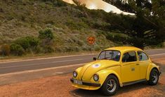 Looking for a cheap and stylish car to rent in Cape Town? Consider hiring a Beetle from Fun Car Hire; they're practical, charismatic and stylish. Stuff To Do, Things To Do, Vw Beetles, Car Ins, Cape Town, Volkswagen, Trips, Fun, Fin Fun