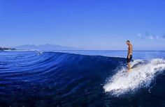 Noosa Surf  http://www.noosafoodandwine.com.au/