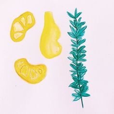 Citrus and herbs and more - drawing some groceries that I love in order to print and sew some thick cotton shopping tote bags. Im so sick of using plastic for my shopping bags (we currently use giant Aldi plastic bags we bought years ago but theyre getting cuts in them) and I wanted to design something that would make me excited happy and motivated to use them. Plastic Bags, Shopping Bags, Tote Bags, Sick, Herbs, My Love, Drawings, Happy, Illustration